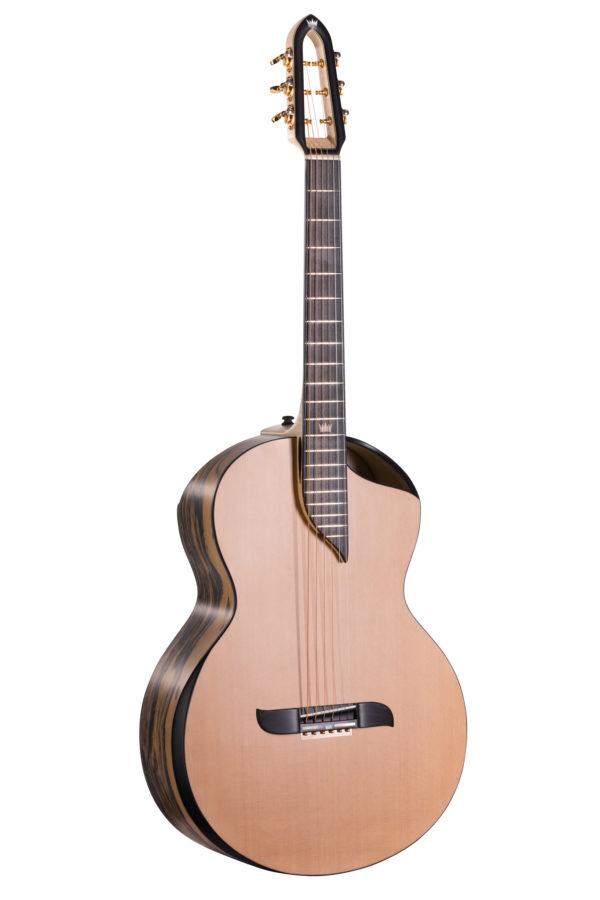 Gitara akustyczna współczesna