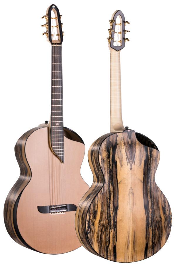 Gitara z 2 otworami rezonansowymi